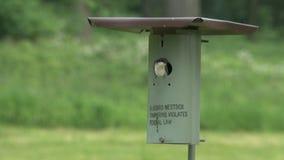 El pequeño pájaro trae la comida almacen de video