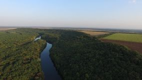 El pequeño río, bosque del otoño, aró la opinión aérea del campo Autumn Landscape almacen de metraje de vídeo