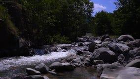 El pequeño río hermoso fluye entre las rocas y los árboles almacen de video
