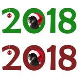 El pequeño Schnauzer miniatura del perro negro en sombrero del ` s de Papá Noel mira hacia fuera t Foto de archivo libre de regalías