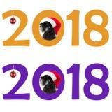 El pequeño Schnauzer miniatura del perro negro en sombrero del ` s de Papá Noel mira hacia fuera t imagenes de archivo