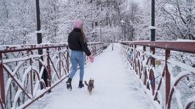 El pequeño yorkie camina en el correo con el dueño en el puente Terrier de Yorkshire que corre con la muchacha en un parque nevad metrajes