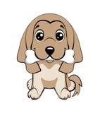 el perrito feliz con un hueso agita una cola Imagen de archivo