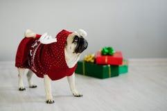 El perrito graciosamente del barro amasado de la raza se viste por un día de fiesta en traje del reno Foto de archivo libre de regalías