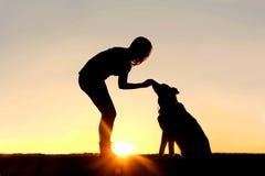 El perro casero de alimentación de la mujer trata la silueta Fotografía de archivo libre de regalías