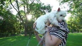 El perro casero feliz de la tenencia de la mujer en sus manos da vuelta bajo luz del sol Tiro del PDA metrajes