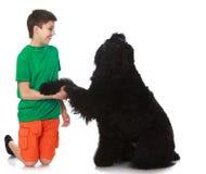 El perro da la pata al muchacho Imagenes de archivo