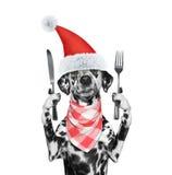 El perro de Papá Noel quiere comer y sostener el cuchillo y la bifurcación imagen de archivo