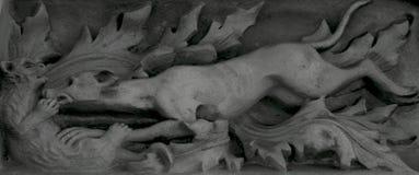 El perro está en el medio de un ataque feroz Imagenes de archivo