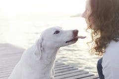 El perro feliz intenta dar un beso a su dueño imagenes de archivo