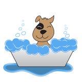 El perro feliz toma un baño Imagenes de archivo