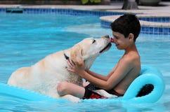 El perro hermoso y el muchacho únicos de Labrador del golden retriever que se relajan en la piscina en una cama flotante, persigu Imagenes de archivo