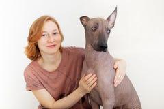 El perro mira uno otro con incredulidad Imágenes de archivo libres de regalías