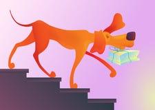 El perro rojo con la torta en sus dientes traga las escaleras Fotos de archivo