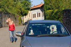 El perro sale del propietario Foto de archivo libre de regalías