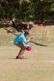El perro salta de hombros de los instructores para coger el disco volador en aire Imagen de archivo libre de regalías