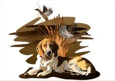 El perro y el pato imagen de archivo