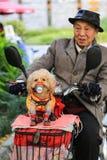 El perro y el viejo hombre en Chengdu, China Fotografía de archivo libre de regalías