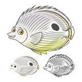 El personaje de dibujos animados de alta calidad de cuatro Butterflyfish del ojo incluye el diseño y la línea planos Art Version Foto de archivo