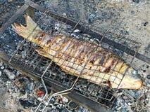 El pescado se está preparando en parrilla Fotografía de archivo libre de regalías