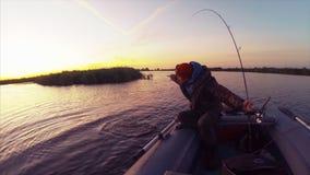 El pescador aficionado coge el lucio almacen de video