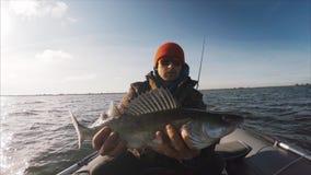 El pescador aficionado sostiene el Zander almacen de video