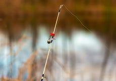 El pescador coge pescados en el cebo en la charca imagen de archivo