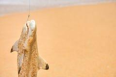 El pescador cogió el tiburón en la playa con la onda blanca de la espuma en el mar Tiburón en la caña de pescar con el tiburón y  Foto de archivo