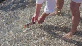 El pescador da el freedome para los pescados del oro El pescado está flotando lejos metrajes
