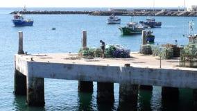 El pescador desata cuerdas en un embarcadero en Cascais, Portugal con los barcos de pesca en el fondo metrajes