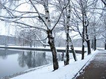 El pescador en el lago del invierno Foto de archivo libre de regalías
