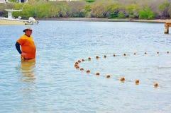 El pescador enseña a niños a utilizar la red Imagen de archivo libre de regalías