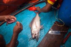 El pescador está haciendo el cebo del gancho para pescar en el barco imagenes de archivo