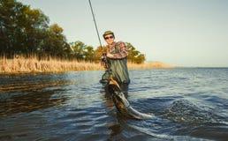 El pescador está sosteniendo un lucio de los pescados cogido en un gancho adentro fotografía de archivo