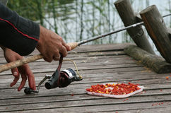 El pescar con caña Imagen de archivo libre de regalías