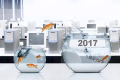 El pez de colores que salta al acuario con el número 2017 Imagenes de archivo