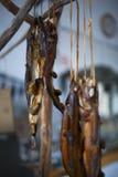 El pez volador de sequía en Lanyu Imagen de archivo