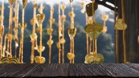 El pho del oro deja la ejecución en árbol de oro y x28; image& x29 de la falta de definición; con el selecte Fotos de archivo