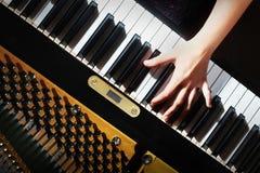El piano cierra el teclado de las manos del pianista Fotos de archivo libres de regalías