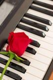 El piano de las rosas rojas cierra el fondo romántico de la música Imagen de archivo