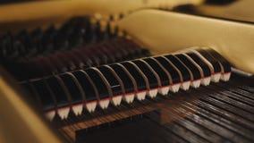 El piano martilla jugar las llaves primer, fondo de la m?sica almacen de metraje de vídeo