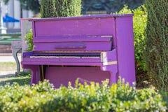 El piano púrpura viejo se coloca en el parque Imágenes de archivo libres de regalías