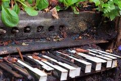El piano viejo se fue para crecerse demasiado con las plantas y la vegetación Fotos de archivo