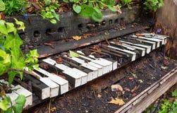 El piano viejo se fue para crecerse demasiado con las plantas y la vegetación Imagen de archivo libre de regalías