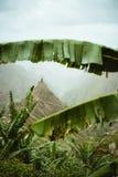 El pico de montaña del valle de Xo-xo visible en el plátano sale del marco abajo del valle Uno de la mejor ruta del senderismo Imagen de archivo