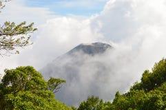 El pico perfecto del volcán activo y joven de Izalco visto de un punto de visión en el parque nacional de Cerro Verde en El Salva Foto de archivo