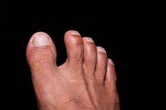 El pie Imagen de archivo
