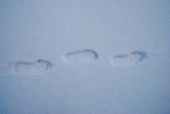 El pie camina en el día nevoso de tierra de la nieve de invierno Imagen de archivo libre de regalías
