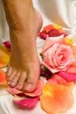 El pie en el paño de seda con la rosa y se levantó Imágenes de archivo libres de regalías