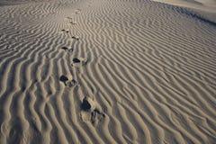 El pie imprime en el â Death Valley de la arena - horizontal Imagen de archivo libre de regalías